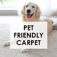 Pet Friendly Carpet